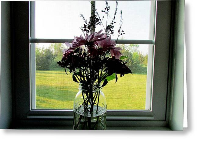 Window Candy Greeting Card by Will Boutin Photos