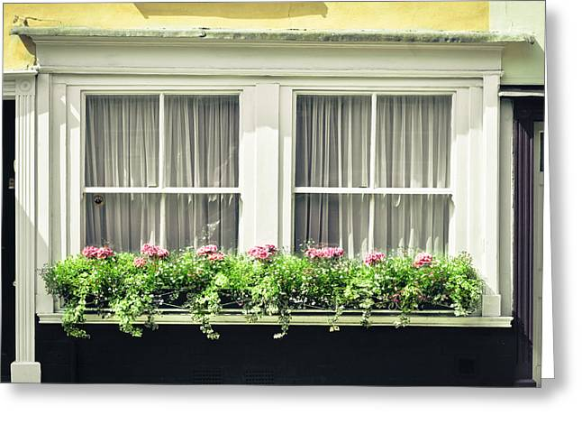 Window Garden Greeting Card by Tom Gowanlock