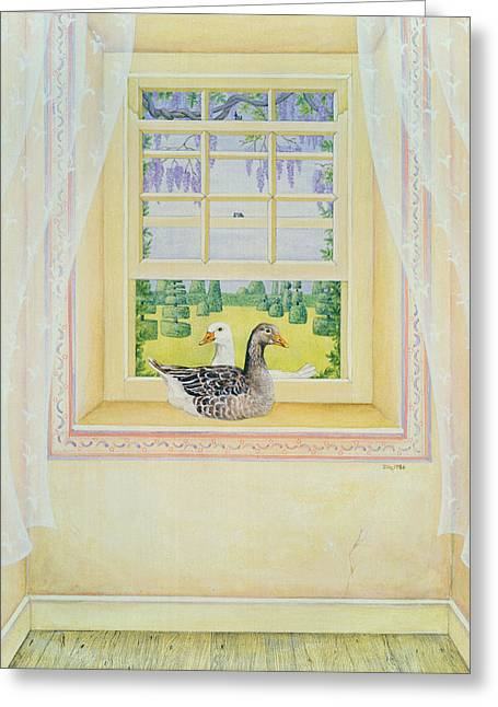 Window Geese Greeting Card by Ditz