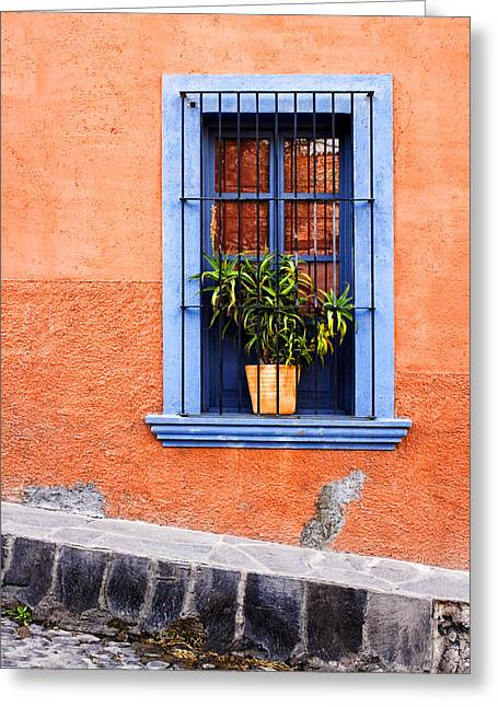 Window In San Miguel De Allende Mexico Greeting Card by Carol Leigh