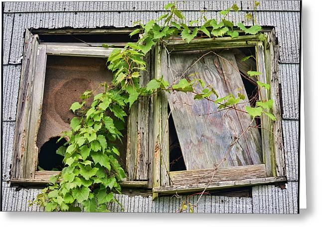 Window Shade 2 Greeting Card by Jeffrey Platt