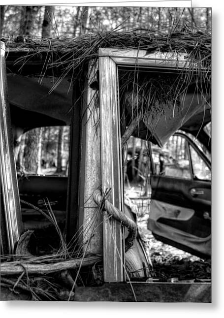 Window Vine In Black And White Greeting Card by Greg Mimbs