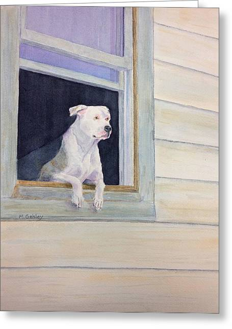 Window Watcher Greeting Card by Mary Gehley