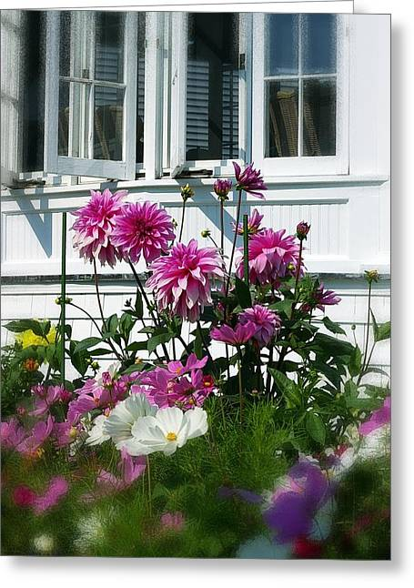 Windows And Flowers Greeting Card by Randy Pollard