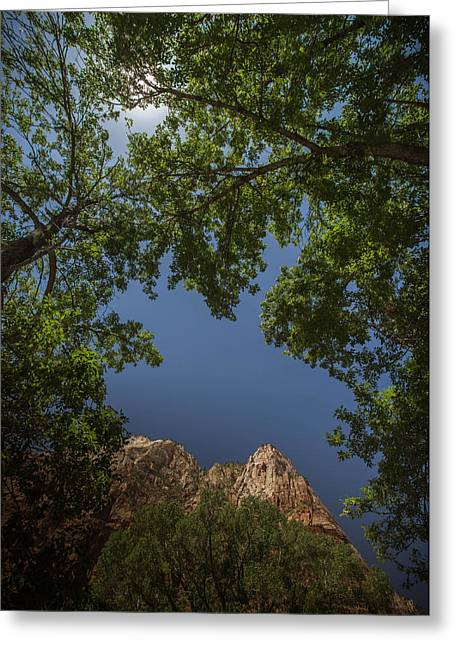 Windows In Zion Greeting Card