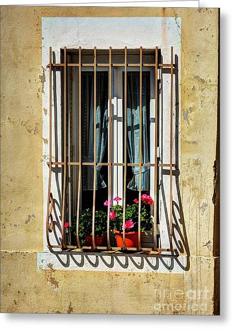 Windows Of Vienne  Greeting Card