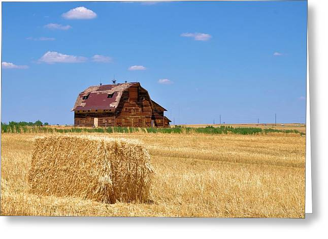 Windswept And Lonely Colorado Barn Greeting Card