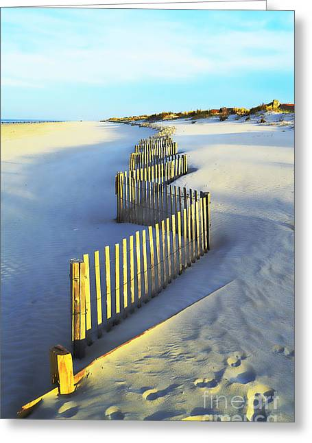 Windswept At Sunset - Jersey Shore Greeting Card by Joseph J Stevens