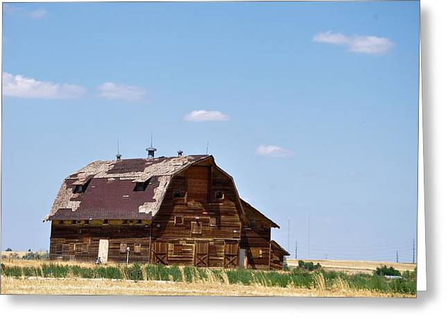 Windswept Colorado Barn Greeting Card