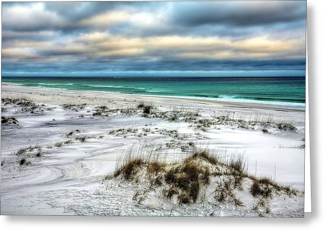 Windswept On Okaloosa Island Greeting Card by JC Findley
