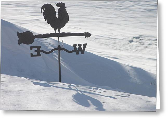 Windvane After Snowstorm Greeting Card by Wayne Williams