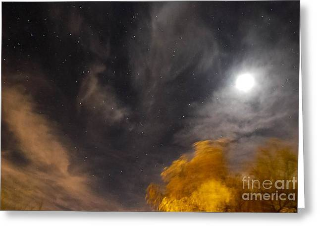 Windy Night Greeting Card by Angela J Wright