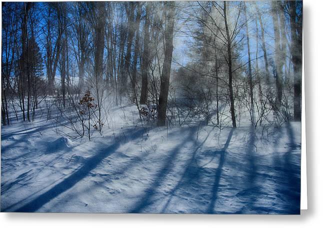Windy Winter Greeting Card