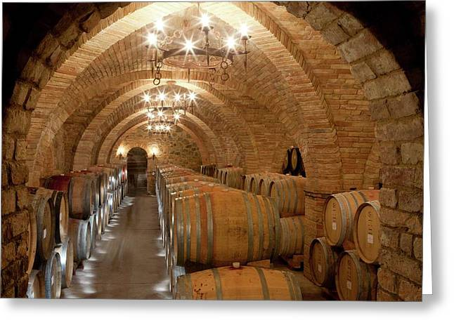 Wine Barrels In A Winery Greeting Card by Peter Menzel