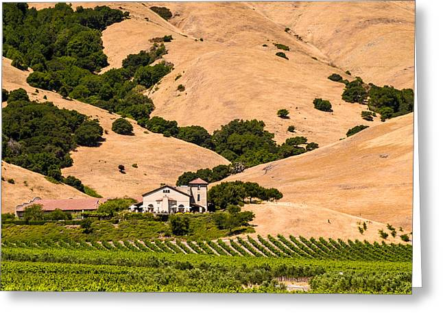 Wine Country Greeting Card
