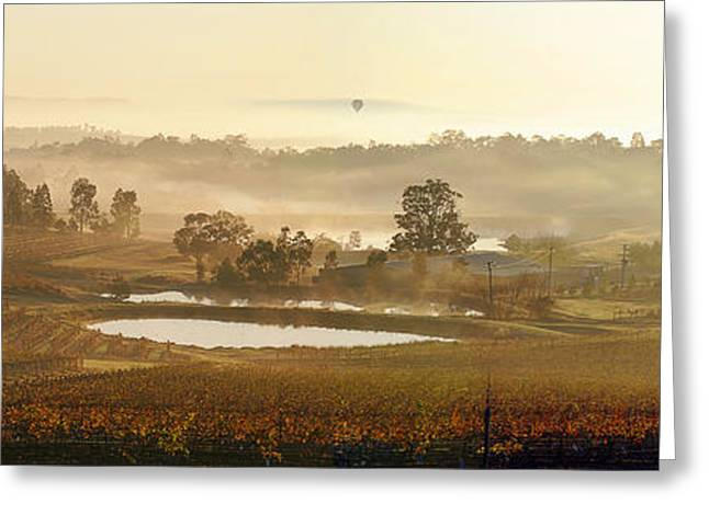 Wine Country Greeting Card by Rick Drent