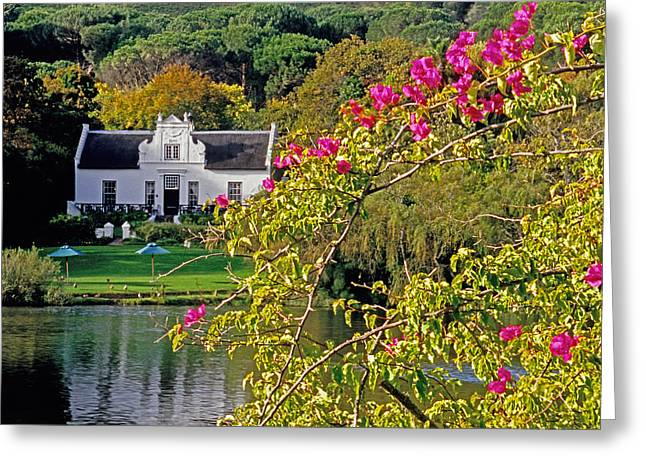 Winelands Manor Greeting Card by Dennis Cox WorldViews