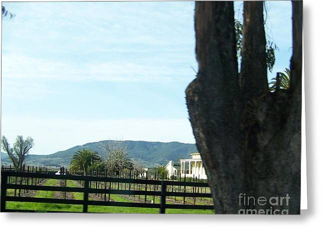 Greeting Card featuring the photograph Winery by Bobbee Rickard