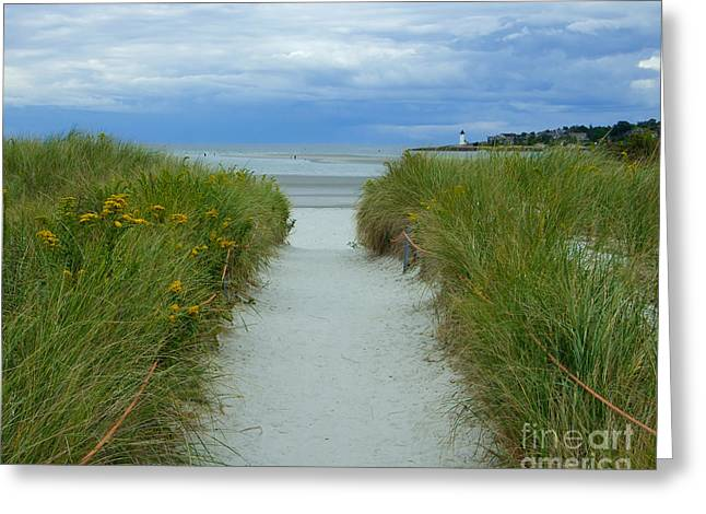 Wingaersheek Beach Path And Annisquam Lighthouse Greeting Card