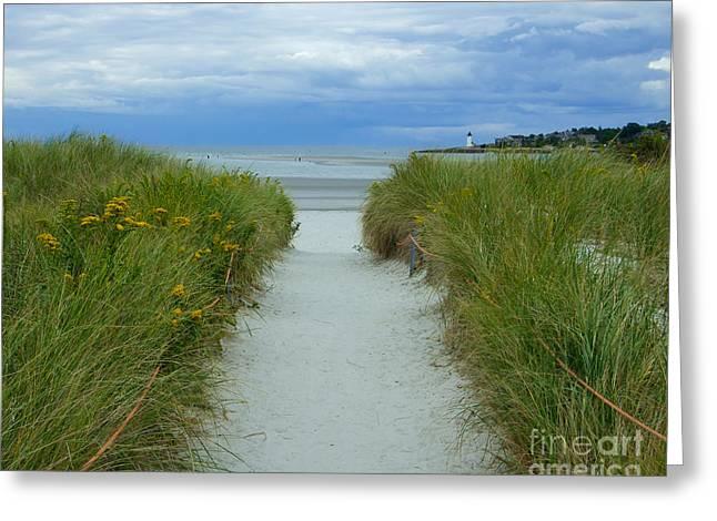 Wingaersheek Beach Path And Annisquam Lighthouse Greeting Card by Kristen Fox