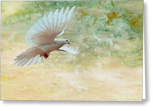 Wings Of A Dove Greeting Card by Beverly Guilliams