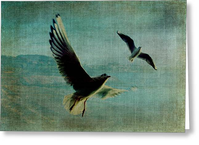 Wings Over The World Greeting Card by Sarah Vernon