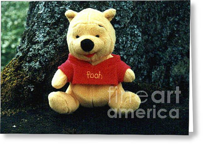 Greeting Card featuring the photograph Winnie The Pooh by Randi Grace Nilsberg