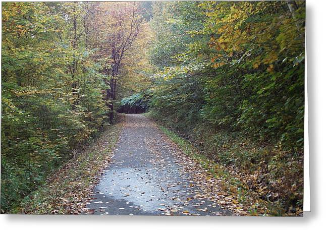 Winnipesaukee Trail Greeting Card by Catherine Gagne