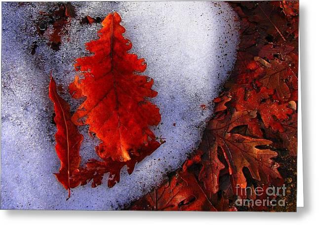 Winter 3  Greeting Card by Vassilis Tagoudis