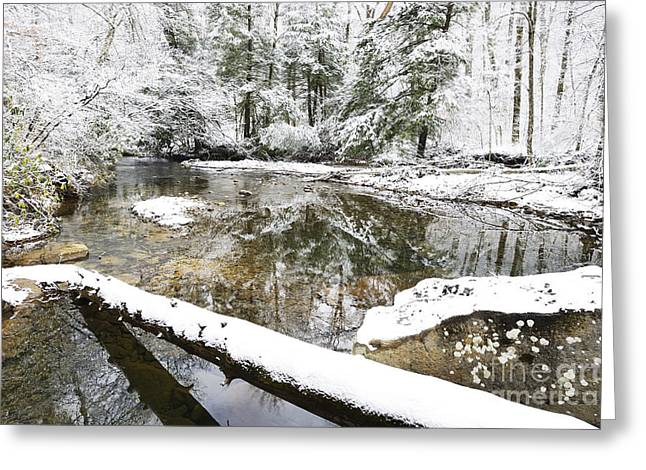 Winter Along Cranberry River Greeting Card by Thomas R Fletcher