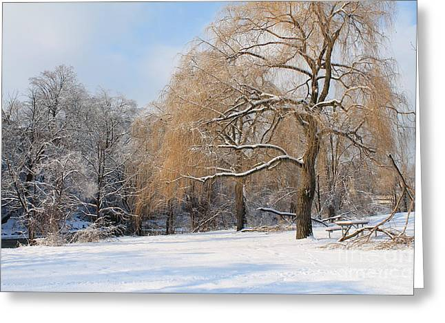 Winter Along The River Greeting Card by Nina Silver