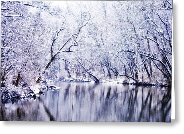 Winter Along The Wissahickon Creek Greeting Card by Bill Cannon