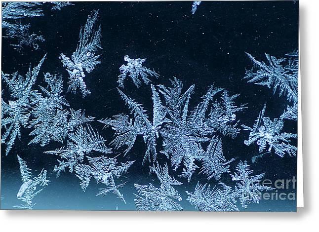 Winter Art Greeting Card by Darren Fisher