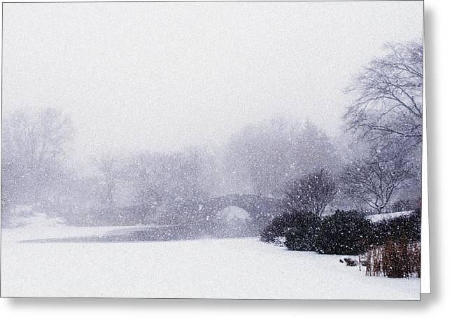 Winter At Central Park Greeting Card