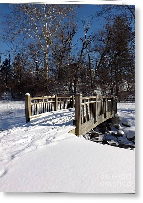 Winter At Creekside Greeting Card
