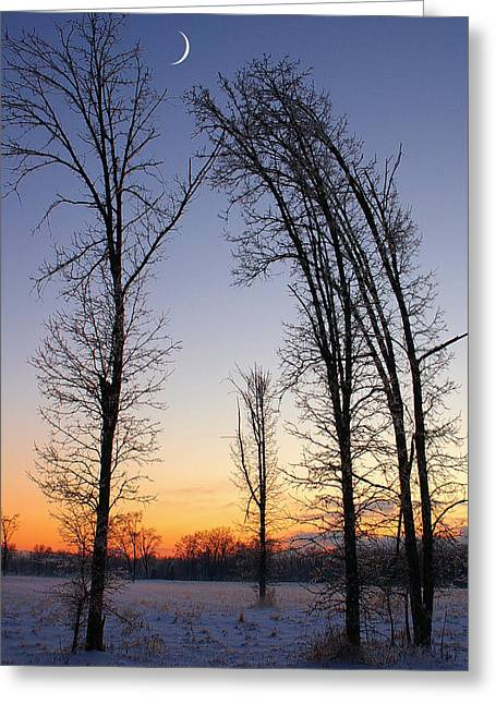 Winter At Dusk Greeting Card