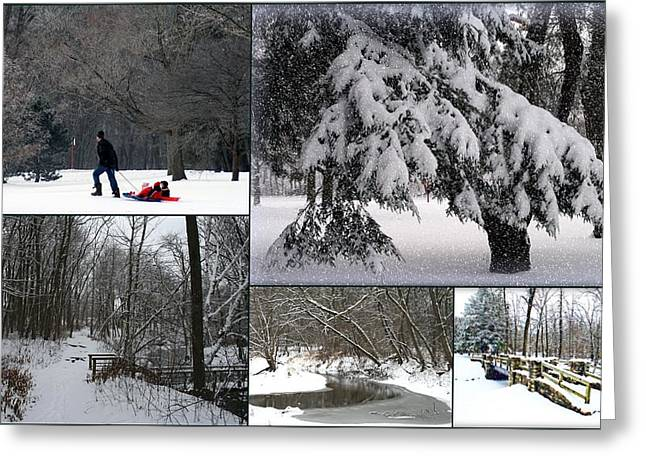 Winter At Petrifying Springs Park Greeting Card by Kay Novy