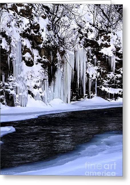 Winter At The Creek Greeting Card by Darleen Stry