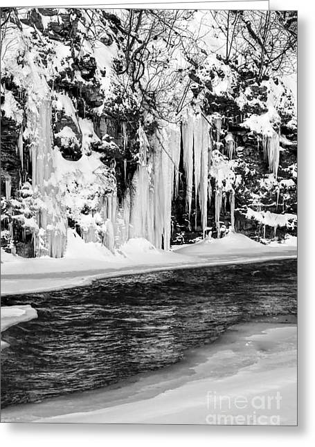 Winter At The Creek Monochrome Greeting Card by Darleen Stry