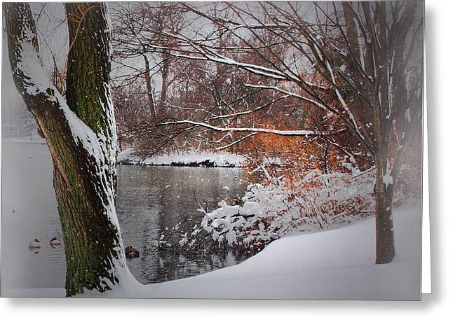 Winter At The Pond Greeting Card by Mikki Cucuzzo
