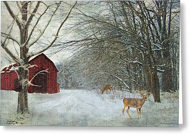 Winter Barn Greeting Card by Lianne Schneider