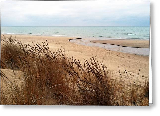 Winter Beach At Pier Cove Greeting Card