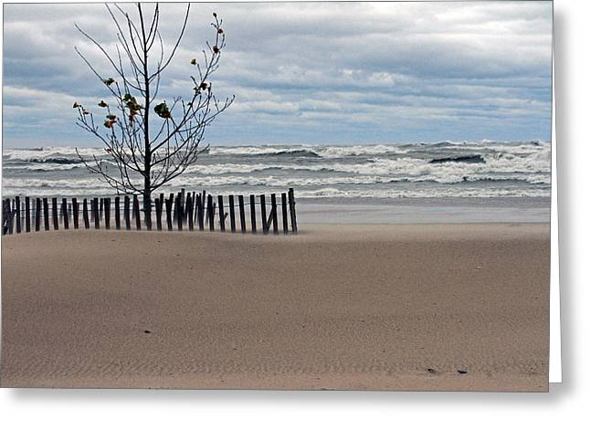 Winter Beach Greeting Card