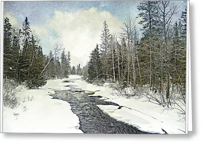 Winter Beauty  Greeting Card by Dianne  Lacourciere