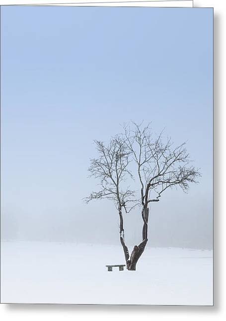 Winter Blues Greeting Card by Bill Wakeley