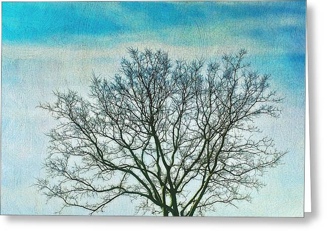 Greeting Card featuring the photograph Winter Blues by Gary Slawsky