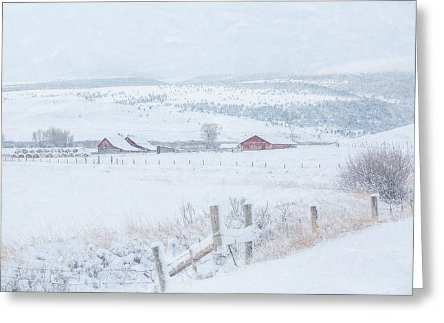 Winter Blues Greeting Card by Gigi Embrechts
