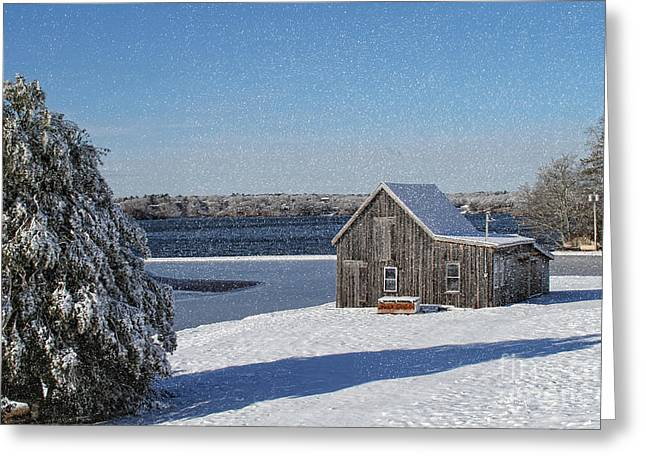 Greeting Card featuring the photograph Winter Bog by Gina Cormier