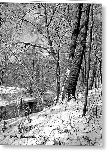 Greeting Card featuring the photograph Winter By A Pennsylvania Stream by A Gurmankin