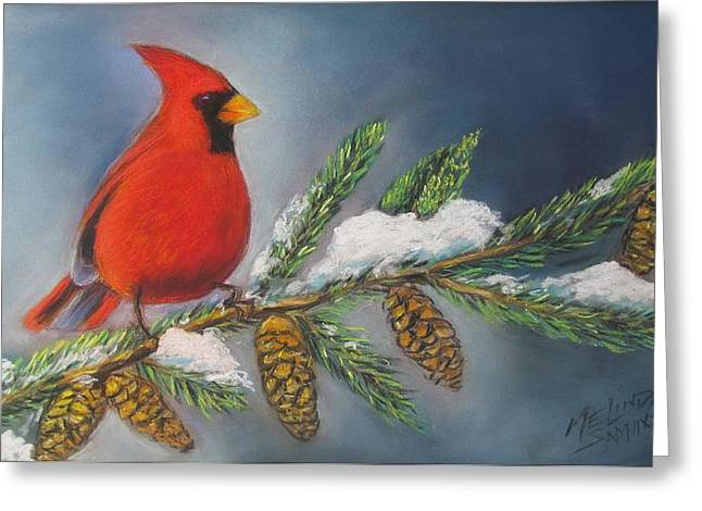 Winter Cardinal 2 Greeting Card by Melinda Saminski